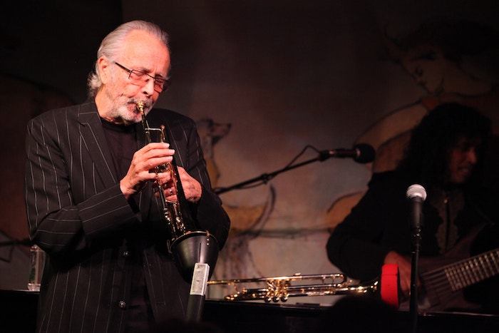 Harlem School of The Arts Herb Alpert Center upgraded performance venue designed by WSDG and featured at the New York Times. Herb Alpert.