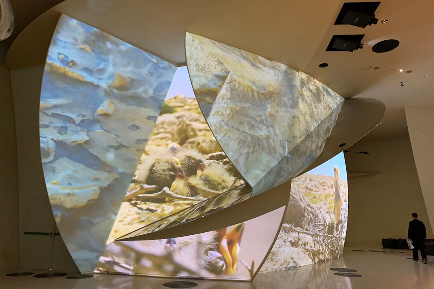 The National Museum of Qatar. WSDG was contracted to create a 3-D acoustic model of the space and make recommendations regarding appropriate speaker usage and placement. Hidden treatment in shapes.
